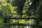 http://gardenpanorama.cz/wp-content/uploads/ninfa023-170x115.jpg