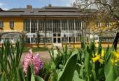 http://gardenpanorama.cz/wp-content/uploads/ratiboriceDSC_0303_07-170x115.jpg