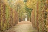 http://gardenpanorama.cz/wp-content/uploads/shonbrunn_img_7568_0051-170x115.jpg