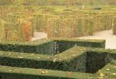 http://gardenpanorama.cz/wp-content/uploads/shonbrunn_img_7623_0101-170x115.jpg