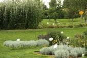 http://gardenpanorama.cz/wp-content/uploads/sonnentor_IMG_8598_002-170x115.jpg