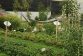 http://gardenpanorama.cz/wp-content/uploads/sonnentor_IMG_8622_016-170x115.jpg