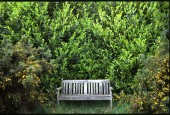 http://gardenpanorama.cz/wp-content/uploads/standen05-170x115.jpg