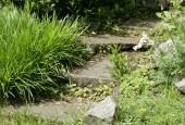 http://gardenpanorama.cz/wp-content/uploads/strz_img_9157_014-170x115.jpg