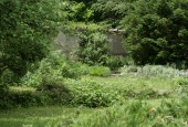 http://gardenpanorama.cz/wp-content/uploads/strz_img_9183_022-170x115.jpg