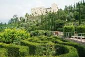 http://gardenpanorama.cz/wp-content/uploads/trauttmansdorffimg_5687_003-170x115.jpg