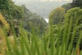http://gardenpanorama.cz/wp-content/uploads/trebach_img_2502_0021-170x115.jpg