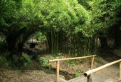 http://gardenpanorama.cz/wp-content/uploads/trebach_img_2516_004-170x115.jpg