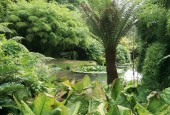 http://gardenpanorama.cz/wp-content/uploads/trebach_img_2520_0051-170x115.jpg