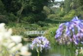http://gardenpanorama.cz/wp-content/uploads/trebach_img_2553_011-170x115.jpg