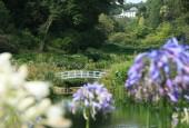 http://gardenpanorama.cz/wp-content/uploads/trebachimg_2553_17-170x115.jpg