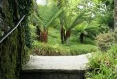 http://gardenpanorama.cz/wp-content/uploads/trelissick004-170x115.jpg