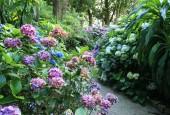 http://gardenpanorama.cz/wp-content/uploads/trelissick006-170x115.jpg