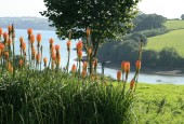 http://gardenpanorama.cz/wp-content/uploads/trelissick011-170x115.jpg
