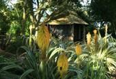http://gardenpanorama.cz/wp-content/uploads/trelissick012-170x115.jpg