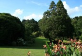 http://gardenpanorama.cz/wp-content/uploads/trelissick020-170x115.jpg