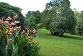 http://gardenpanorama.cz/wp-content/uploads/trelissick022-170x115.jpg