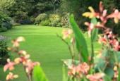 http://gardenpanorama.cz/wp-content/uploads/trelissick024-170x115.jpg