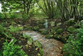 http://gardenpanorama.cz/wp-content/uploads/trelissick027-170x115.jpg