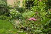 http://gardenpanorama.cz/wp-content/uploads/vikend_praha_IMG_6640_03-170x115.jpg