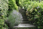 http://gardenpanorama.cz/wp-content/uploads/villa_balbianello_img_9753_043-170x115.jpg