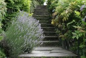 http://gardenpanorama.cz/wp-content/uploads/villa_balbianello_img_9755_044-170x115.jpg