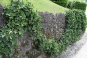 http://gardenpanorama.cz/wp-content/uploads/villa_balbianello_img_9762_045-170x115.jpg