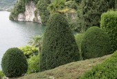 http://gardenpanorama.cz/wp-content/uploads/villa_balbianello_img_9766_046-170x115.jpg