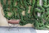http://gardenpanorama.cz/wp-content/uploads/villa_balbianello_img_9788_051-170x115.jpg