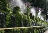 Zahrady s vodou i bez vody