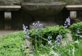 http://gardenpanorama.cz/wp-content/uploads/villa_deste-9-170x115.jpg