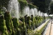 http://gardenpanorama.cz/wp-content/uploads/villa_desteimg_6790_007-170x115.jpg