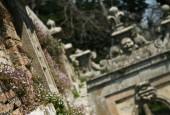 http://gardenpanorama.cz/wp-content/uploads/villa_farnese_img_7056_014-170x115.jpg