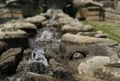 http://gardenpanorama.cz/wp-content/uploads/villa_farnese_img_7088_024-170x115.jpg