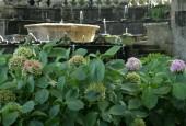 http://gardenpanorama.cz/wp-content/uploads/villa_lante_img_6867_0051-170x115.jpg