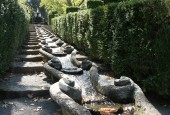 http://gardenpanorama.cz/wp-content/uploads/villa_lante_img_6902_010-170x115.jpg