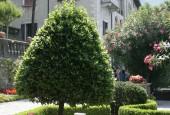 http://gardenpanorama.cz/wp-content/uploads/villa_monasteroimg_0110_003-170x115.jpg