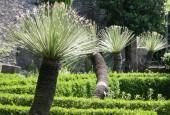 http://gardenpanorama.cz/wp-content/uploads/villa_monasteroimg_0162_0181-170x115.jpg