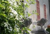 http://gardenpanorama.cz/wp-content/uploads/villa_monasteroimg_0194_026-170x115.jpg