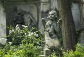 http://gardenpanorama.cz/wp-content/uploads/vojta_krunt_olsany_2_02-170x115.jpg