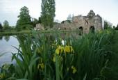 http://gardenpanorama.cz/wp-content/uploads/worlitz_img_8203_0352-170x115.jpg