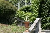 https://gardenpanorama.cz/wp-content/uploads/Villa_Cipressi_img_0290_0131-170x115.jpg