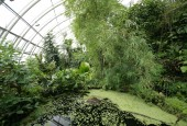 Botanická zahrada Praha – Troja