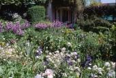 https://gardenpanorama.cz/wp-content/uploads/giverny_02-170x115.jpg