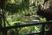https://gardenpanorama.cz/wp-content/uploads/giverny_05-170x115.jpg