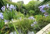 https://gardenpanorama.cz/wp-content/uploads/lost_gard_heliganimg_29451-170x115.jpg