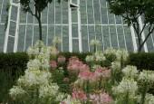 https://gardenpanorama.cz/wp-content/uploads/lost_gard_heliganimg_30291-170x115.jpg