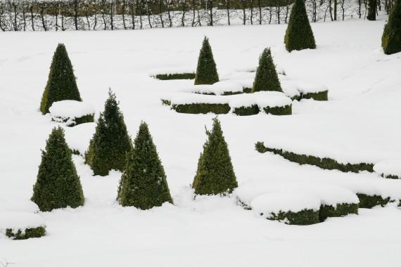 Zahrady v zimě